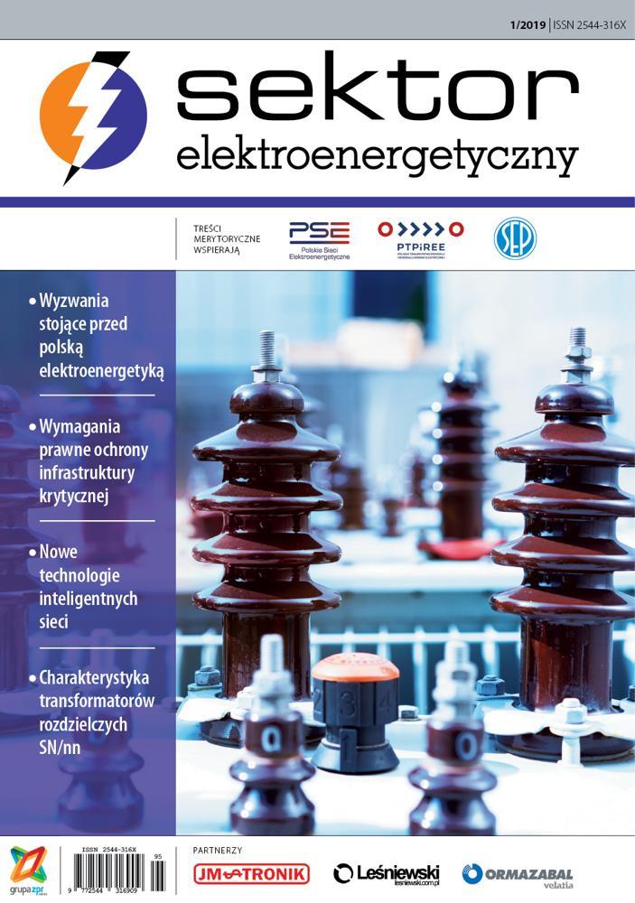 Sektor Elektroenergetyczny 2019